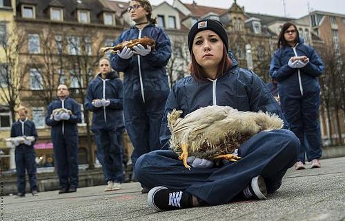 Tierkörperaktion in Karlsruhe